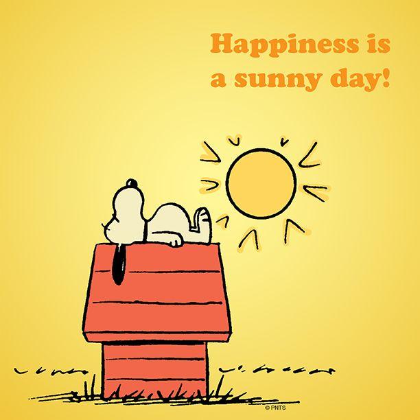 25eef0a6d98ba31c26fe9ce79e23ff0f--sunny-days-snoopy-quotes