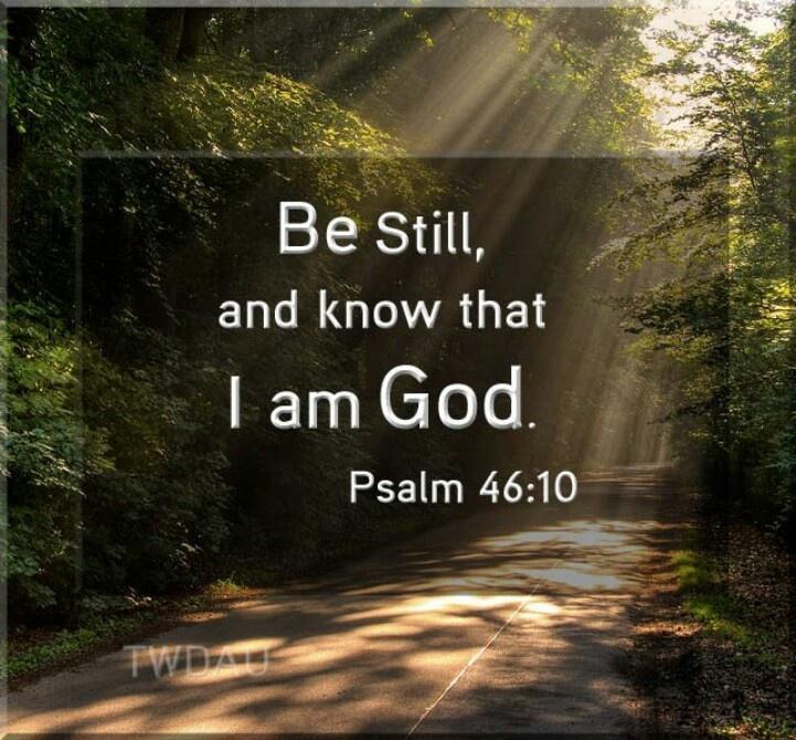 23b5300d4a4b749469c13c3f61d25e1b--psalm--be-still (1).jpg