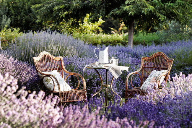 country-garden-wallpaper-26-decor-ideas