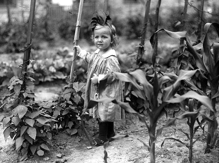 baef5e362311d971920f274556514529--vintage-gardening-sweet-girls