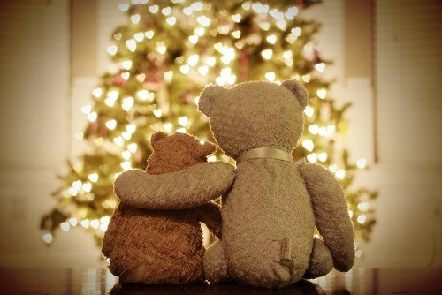 54713-Very-Beary-Christmas