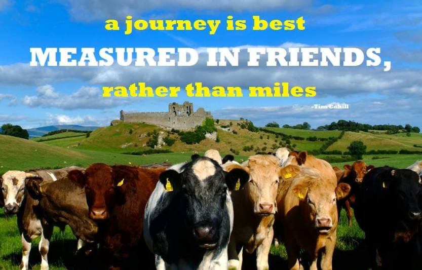 journey-best-measured-in-friends-rather-than-miles-travel-quote-picture.jpg